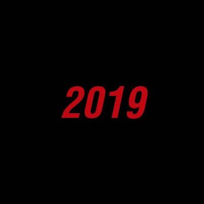 2019 EN IMÁGENES